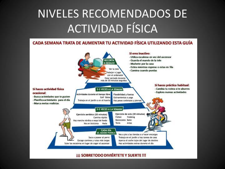 NIVELES RECOMENDADOS DE ACTIVIDAD FÍSICA