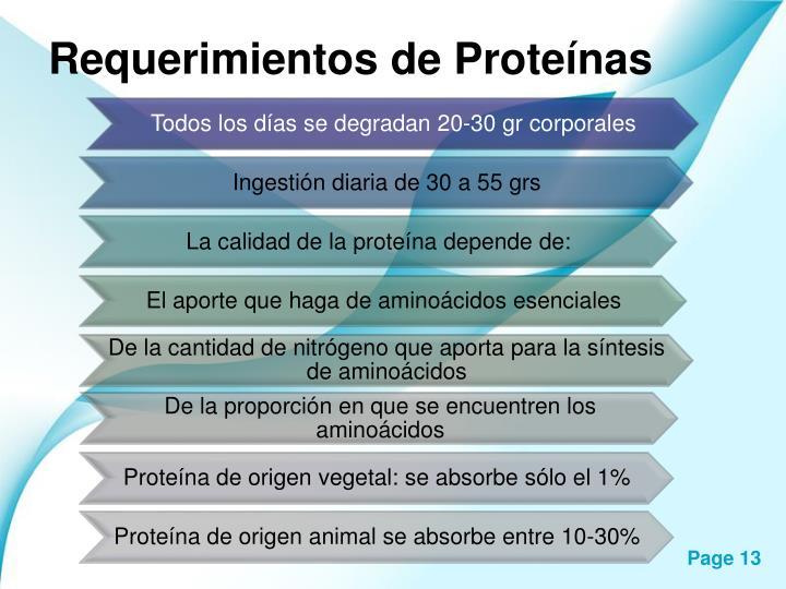 Requerimientos de Proteínas