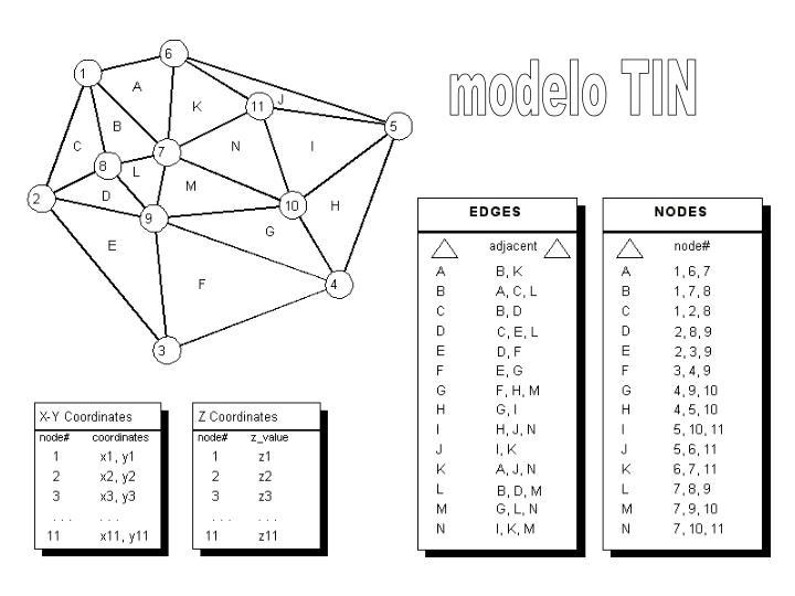 modelo TIN