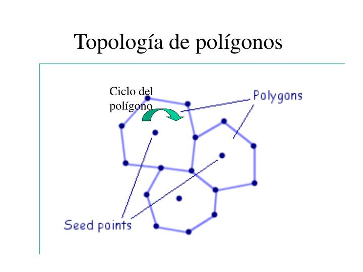 Topología de polígonos