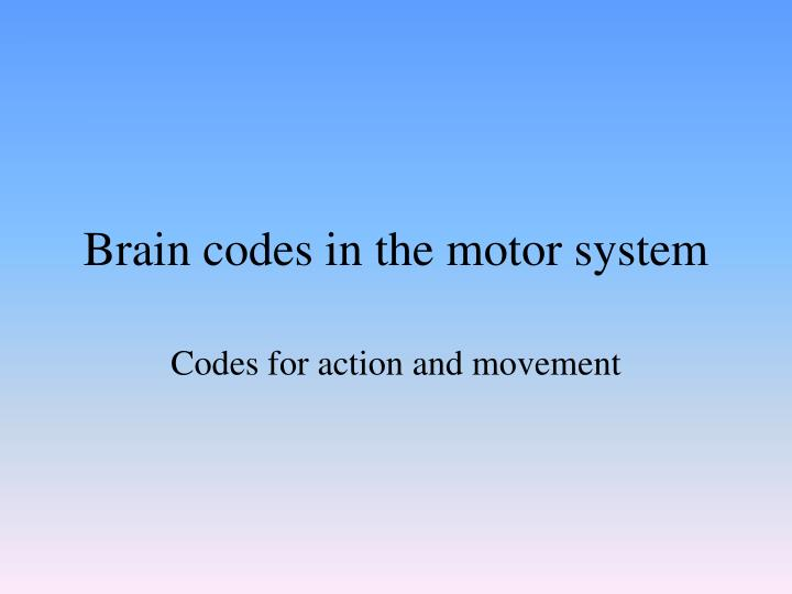 Brain codes in the motor system