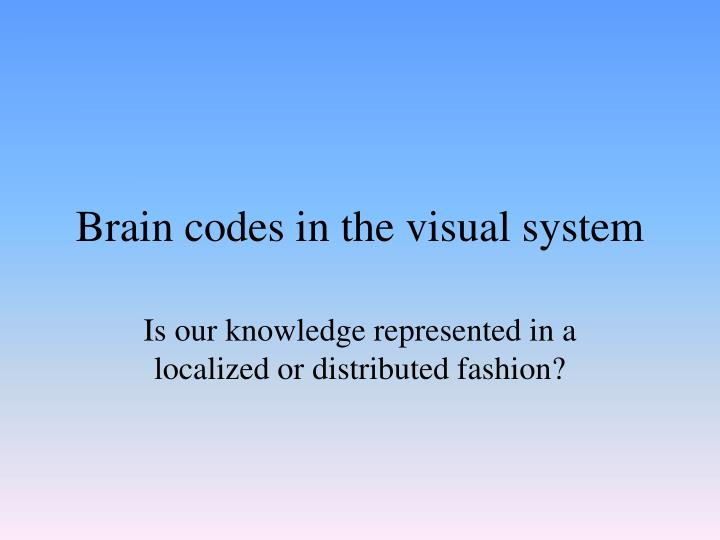 Brain codes in the visual system