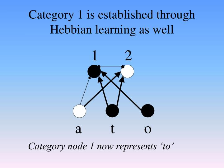 Category 1 is established through Hebbian learning as well