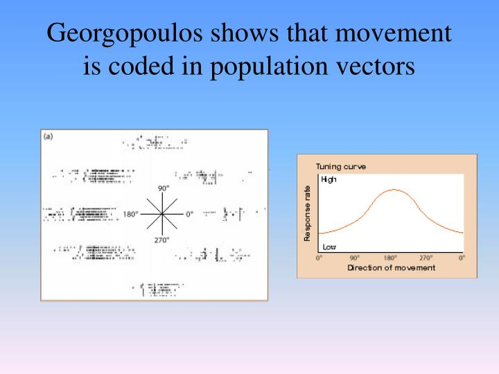 Georgopoulos shows that movement is coded in population vectors