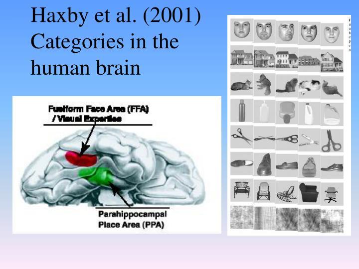 Haxby et al. (2001)