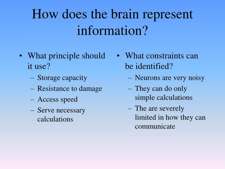 How does the brain represent information