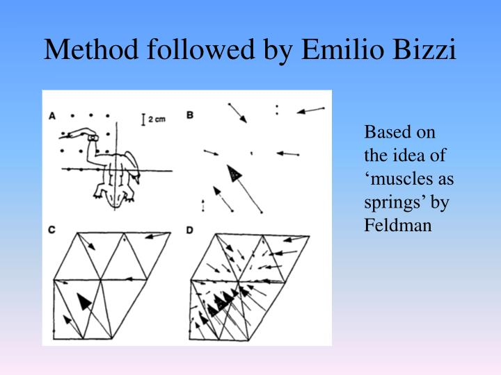Method followed by Emilio Bizzi
