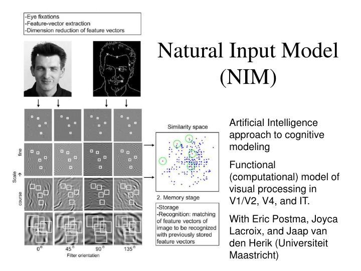 Natural Input Model (NIM)
