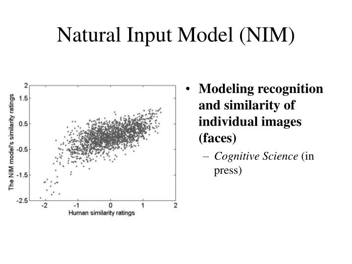 Natural Input Model (NIM)