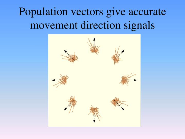 Population vectors give accurate movement direction signals