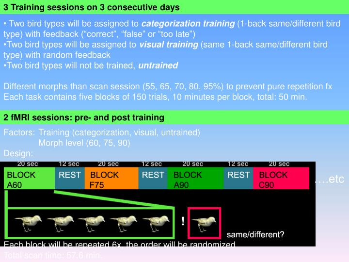 3 Training sessions on 3 consecutive days