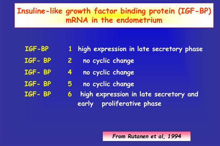 Insuline-like growth factor binding protein (IGF-BP) mRNA in the endometrium