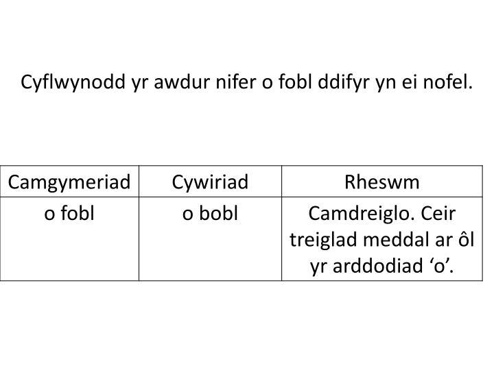 Cyflwynodd
