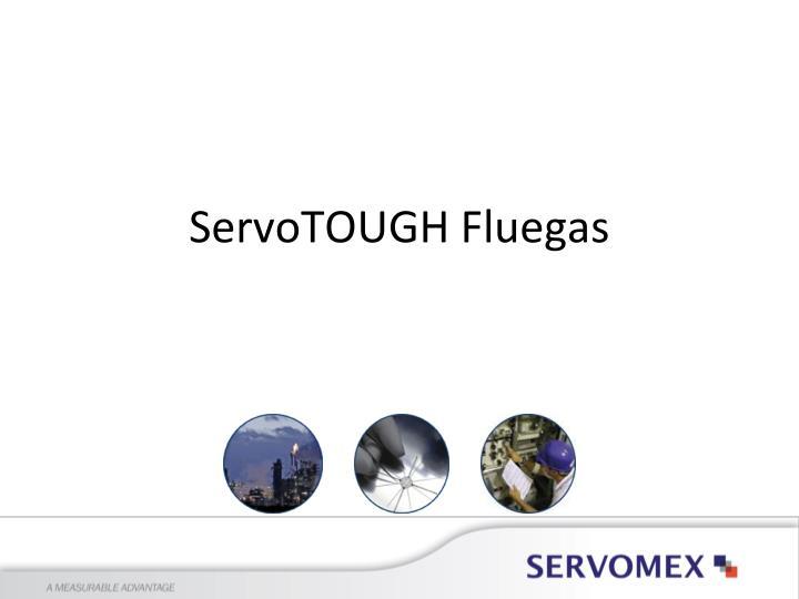 ServoTOUGH Fluegas