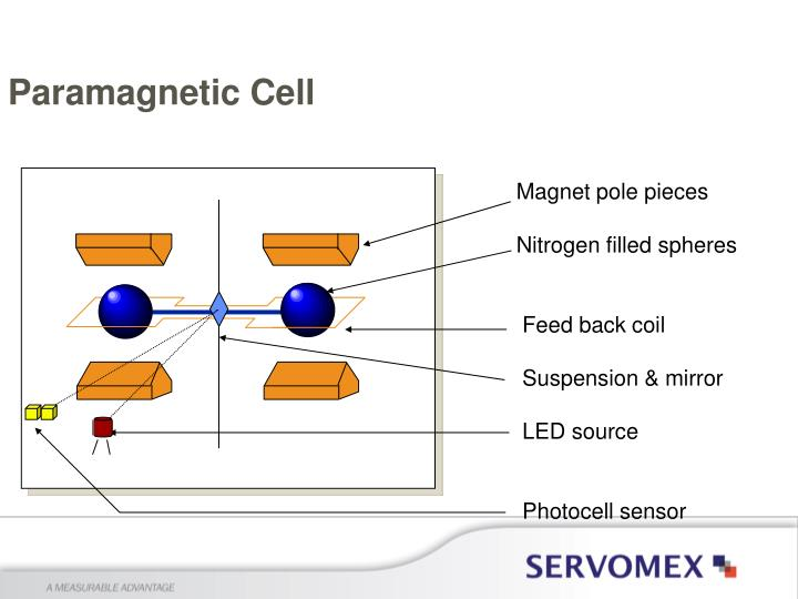 Paramagnetic Cell