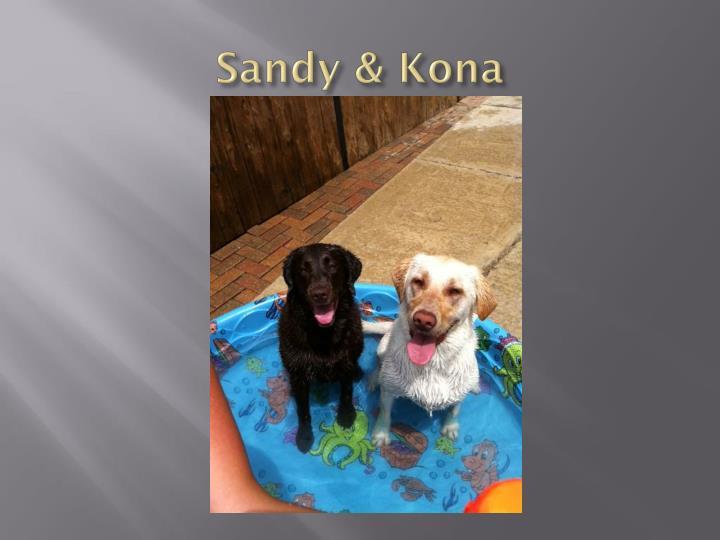Sandy & Kona