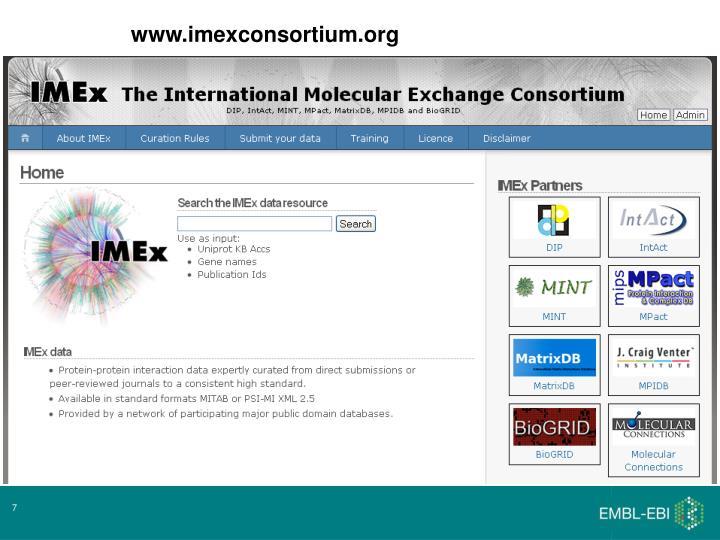 www.imexconsortium.org