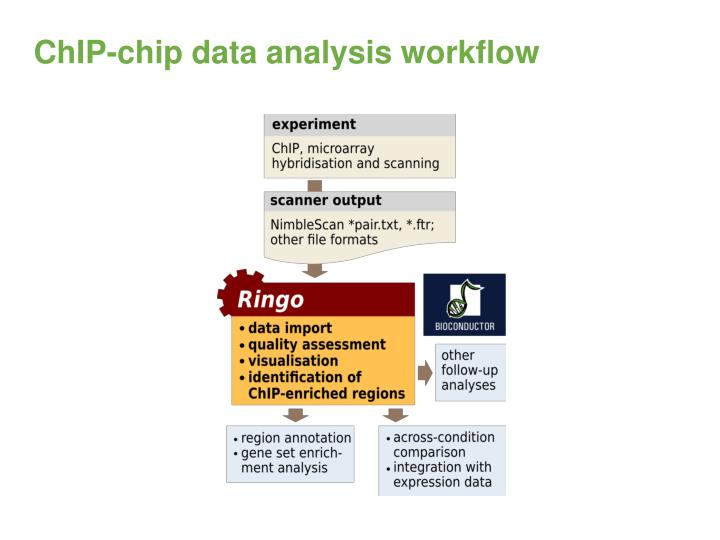 ChIP-chip data analysis workflow