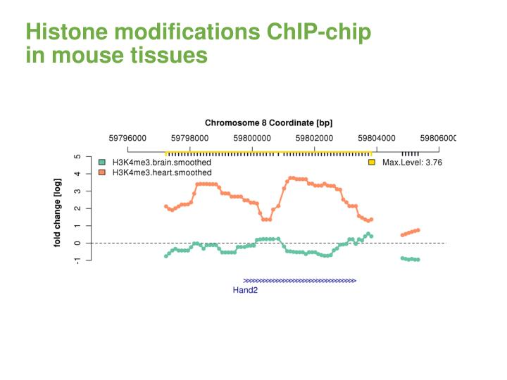 Histone modifications ChIP-chip
