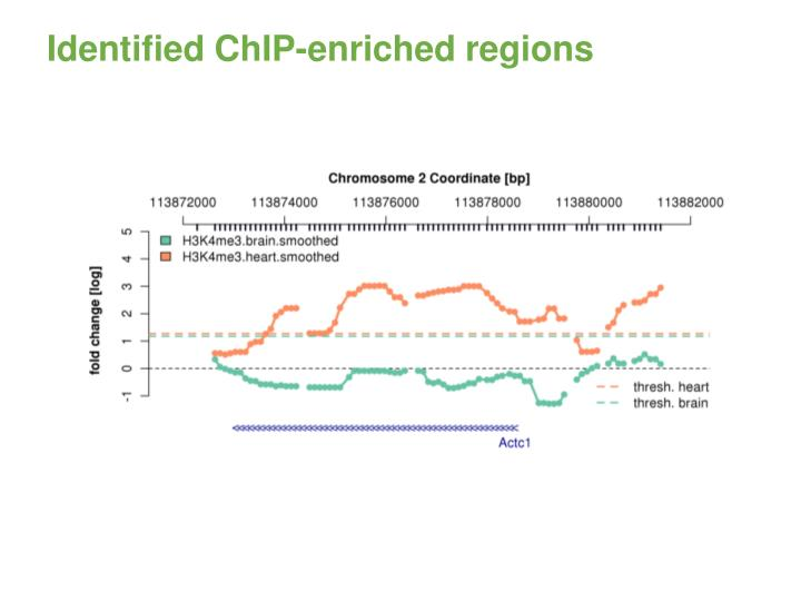 Identified ChIP-enriched regions