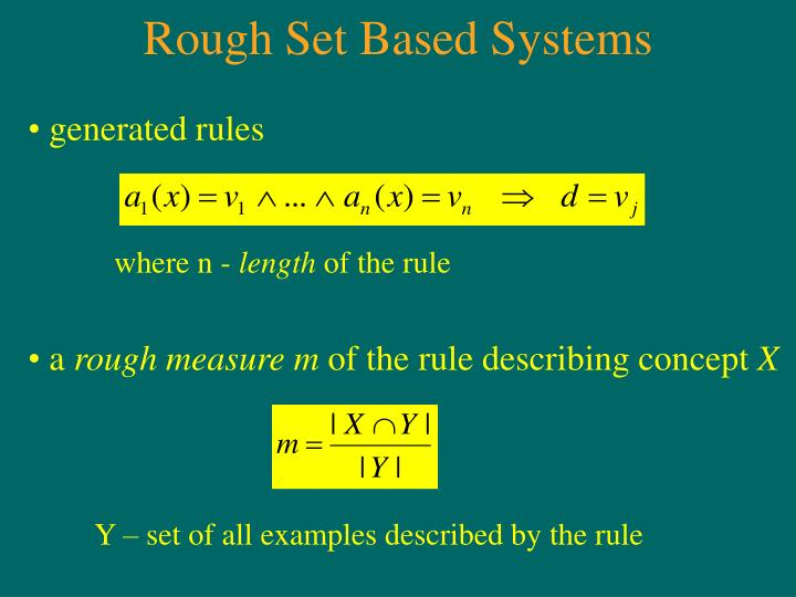 Rough Set Based Systems