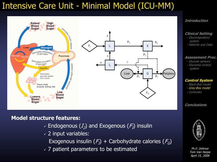 Intensive Care Unit - Minimal Model (ICU-MM)