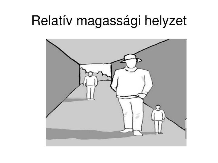 Relatív magassági helyzet