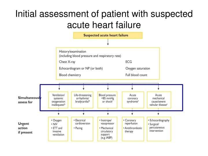 Initial assessment of patient with suspected acute heart failure
