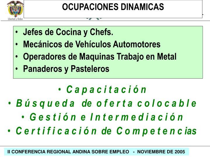 Jefes de Cocina y Chefs.