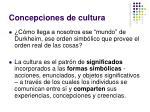 concepciones de cultura