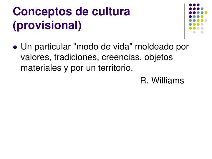 Conceptos de cultura (provisional)