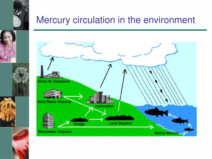 Mercury circulation in the environment