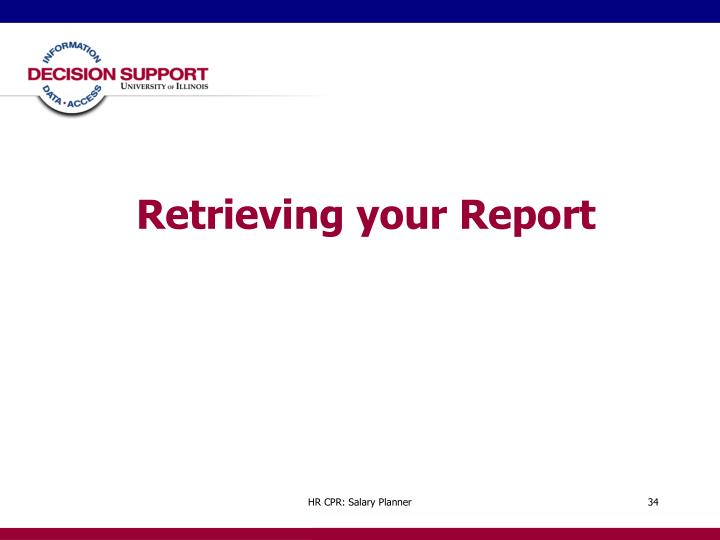Retrieving your Report
