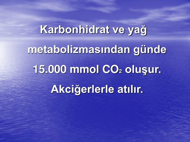 Karbonhidrat ve yağ metabolizmasından günde 15.000 mmol CO