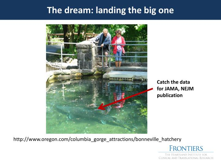 The dream: landing the big one