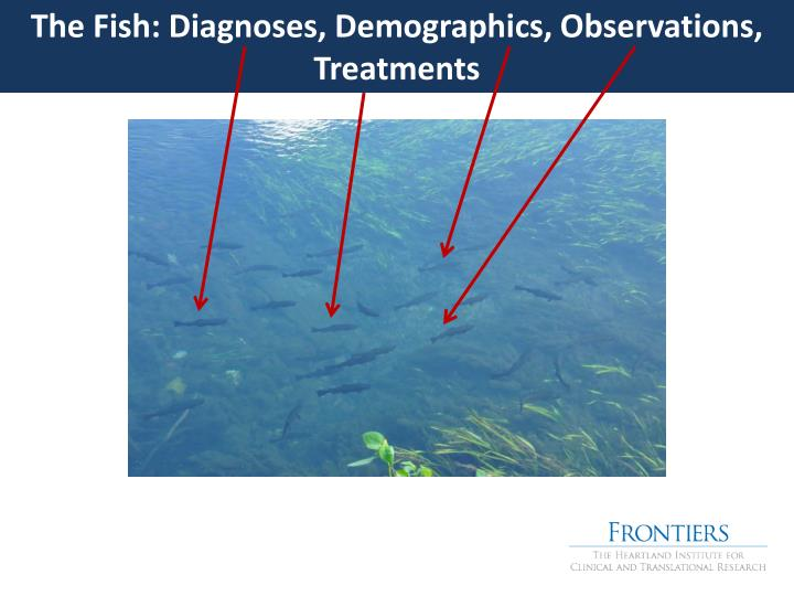 The Fish: Diagnoses, Demographics, Observations, Treatments