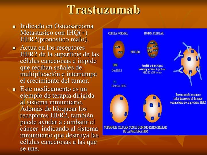 Indicado en Osteosarcoma Metastasico con IHQ(+) HER2(pronostico malo).