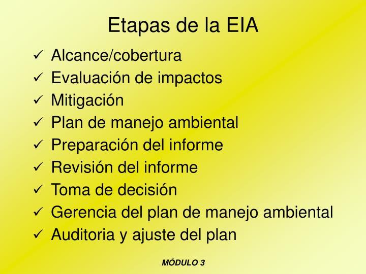 Etapas de la EIA