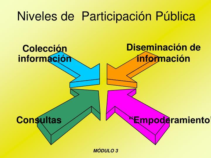 Niveles de  Participación Pública