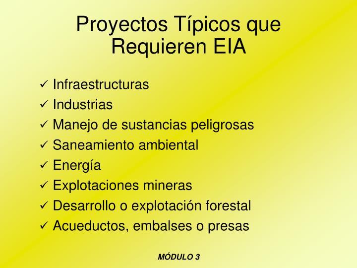 Proyectos Típicos que