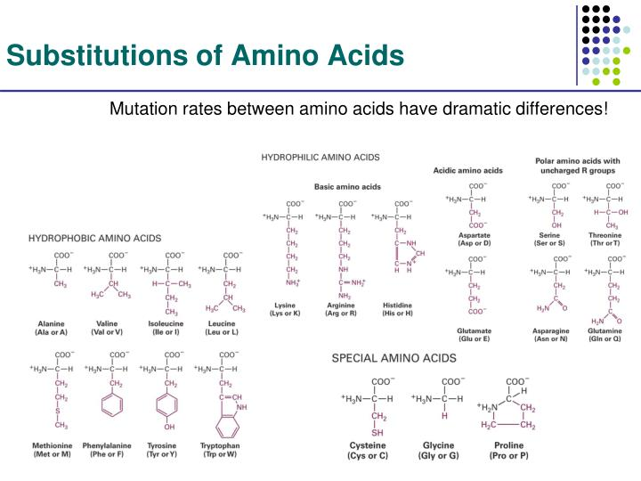 Substitutions of Amino Acids