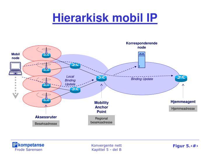 Hierarkisk mobil IP