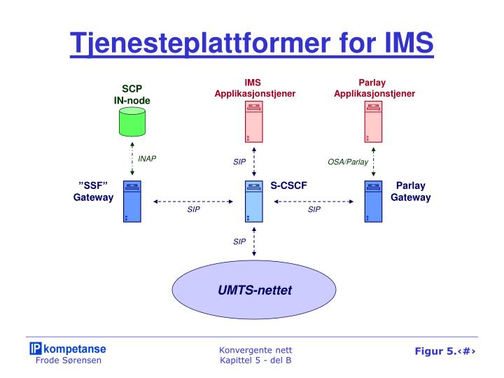 Tjenesteplattformer for IMS