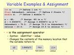 variable examples assignment