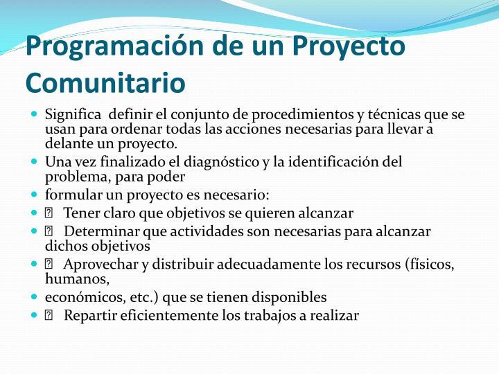 Programación de un Proyecto Comunitario