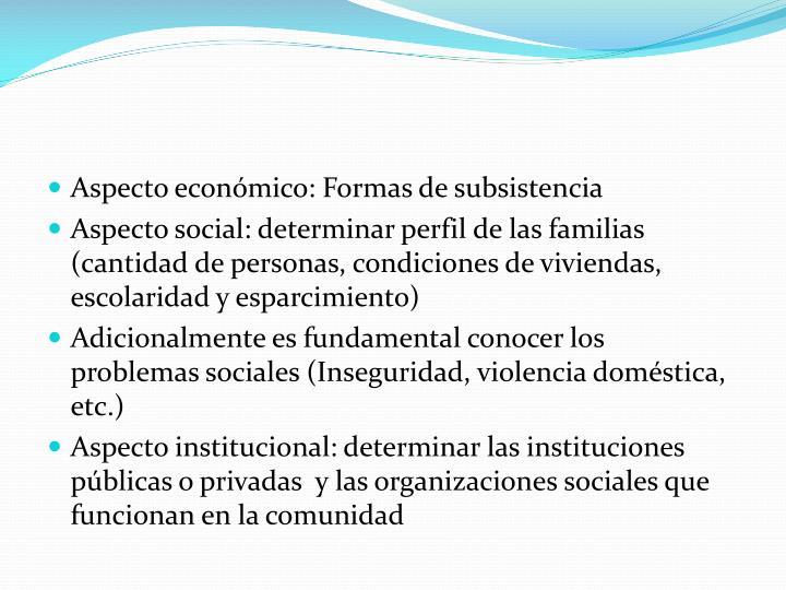 Aspecto económico: Formas de subsistencia