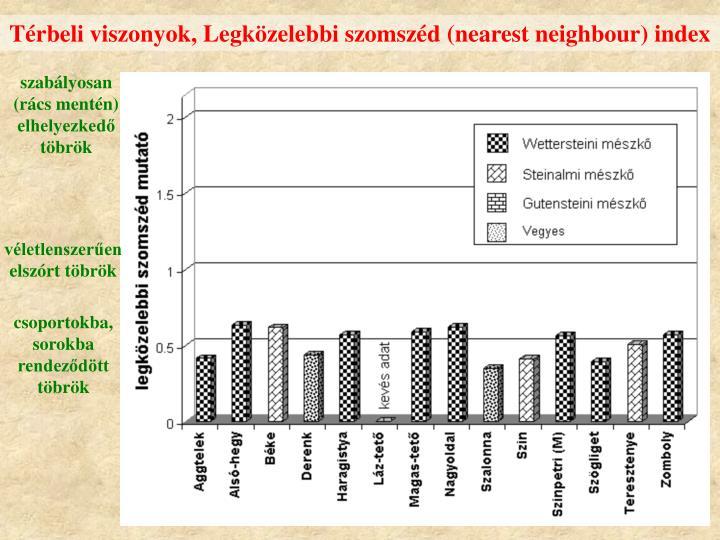 Térbeli viszonyok, Legközelebbi szomszéd (nearest neighbour) index