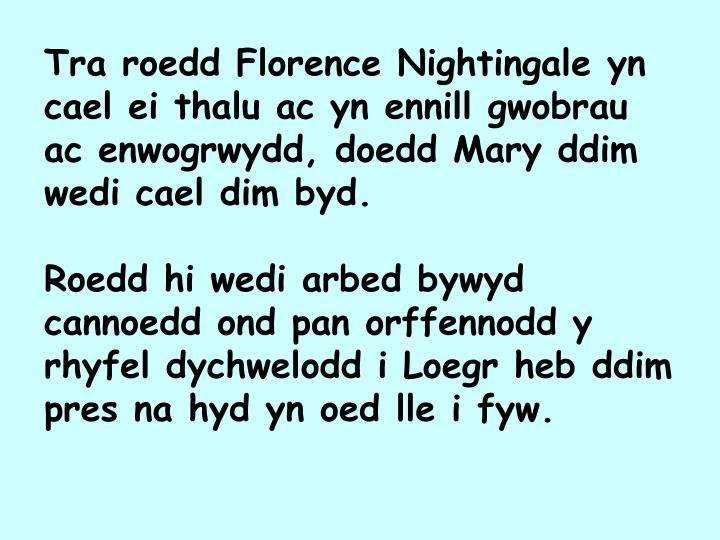 Tra roedd Florence Nightingale yn cael ei thalu ac yn ennill gwobrau ac enwogrwydd, doedd Mary ddim wedi cael dim byd.