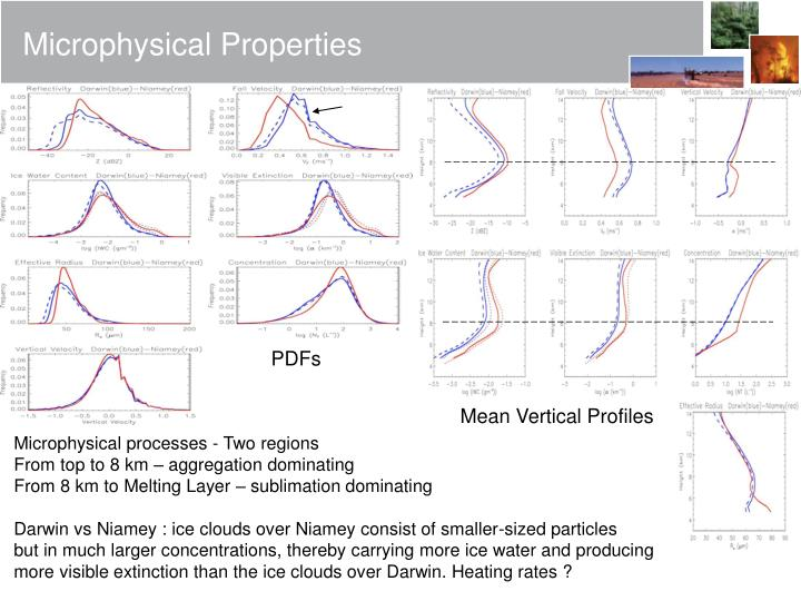 Microphysical Properties
