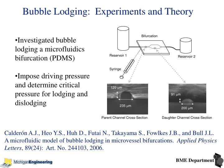 Bubble Lodging:  Experiments and Theory
